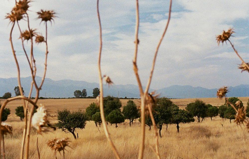 SERIE2_HEADER_NATURE-crop4
